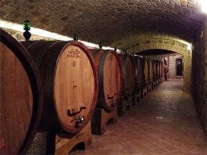 ツアーで行ける、本場イタリアのワイナリー見学体験記