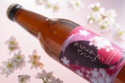 「天下第一の桜」高遠の桜を使った桜餅風味ビール「サンクトガーレン さくら」2月25日より春限定発売