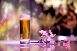 日本一早いお花見が楽しめる『FLOWERS by NAKED 2017 —立春—』を日本橋三井ホールにて期間限定で開催