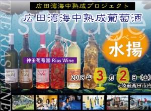 地方活性化を促す海中熟成ワイン 水揚げ観光体験会のトライアル開催