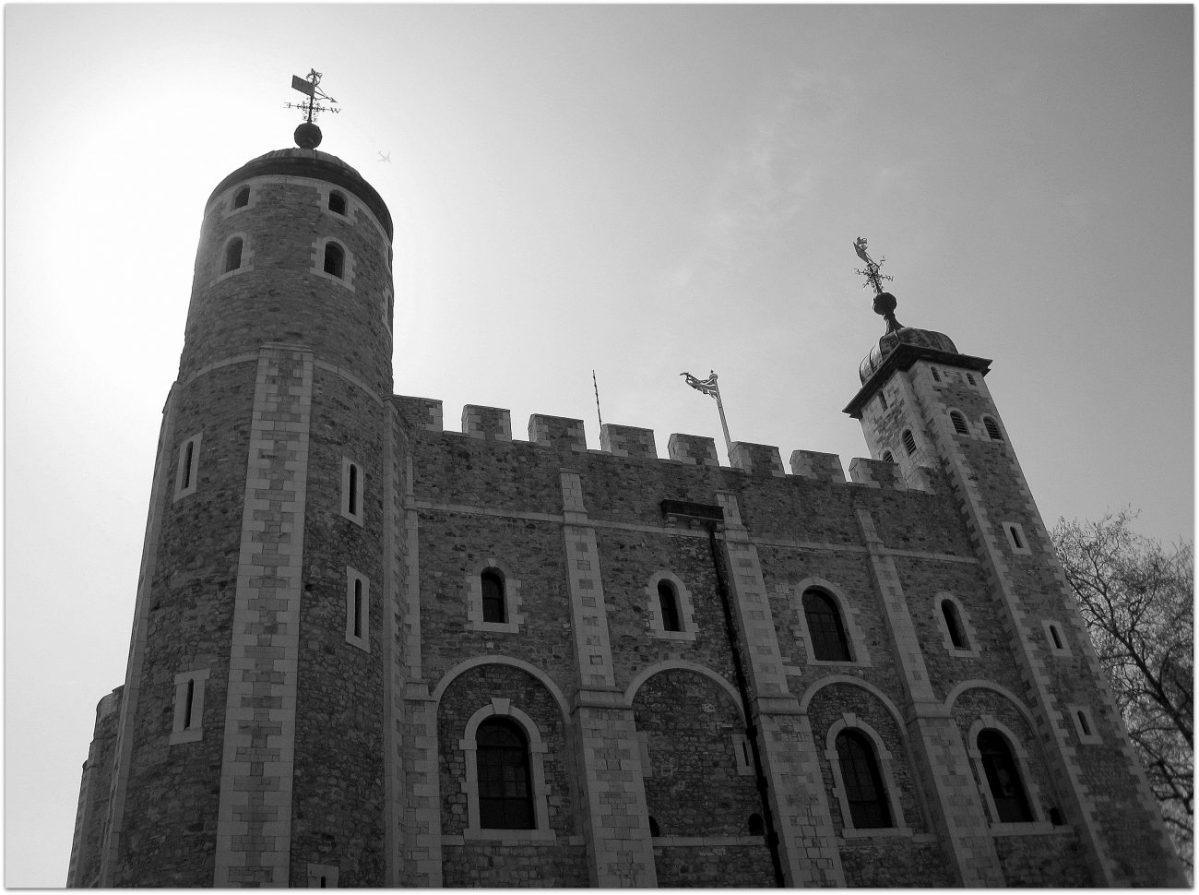 Notas sobre los cuervos y la Torre