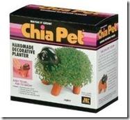 Chia-pet