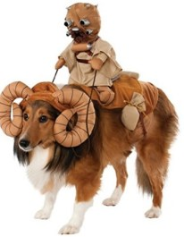 bantha-rider-dog-costume