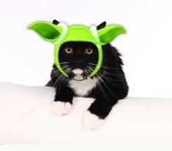 Yoda cat costume headband