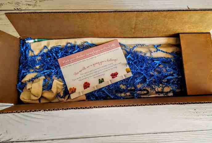 first look in the peaches & petals box