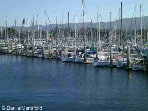 Monterey & Big Sur (12)