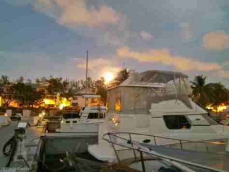 Fort Lauderdale (8)
