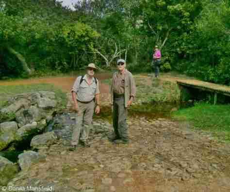 Kirstenbosch Gardens (8)