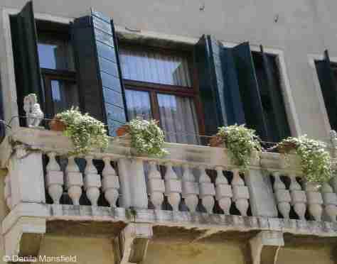 Venice (77)