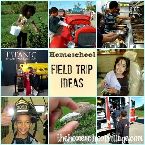 Homeschool-Field-Trip-Ideas-300x300
