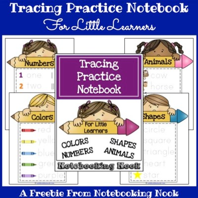 Freebie: Tracing Practice Notebooking