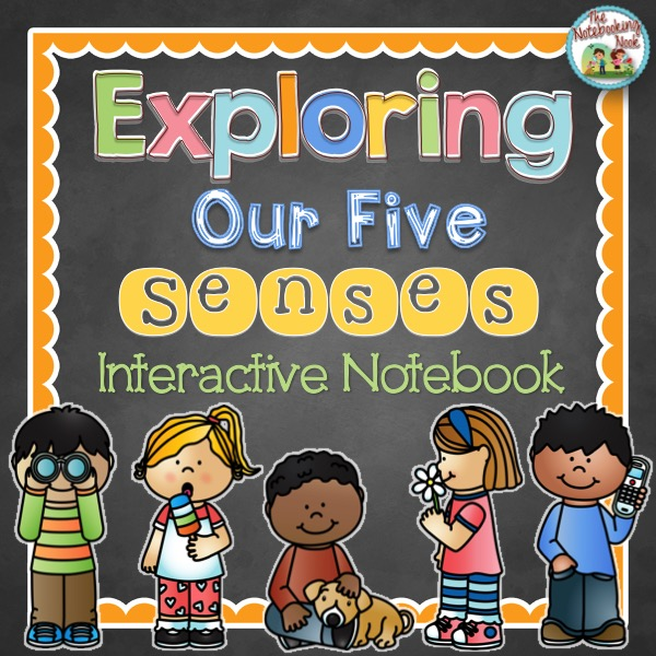 Exploring Our Five Senses Interactive Notebook by The Notebooking Nook