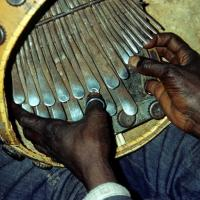 The Mbira | a story of appropriation and dilution