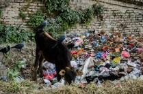 In Nepal helfen beim Recycling alle mit, KTM