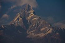 Machapucchare (6.993 m) im Abendlicht, Pokhara