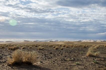 Bis zu 300m türmen sich die Dünen hier auf