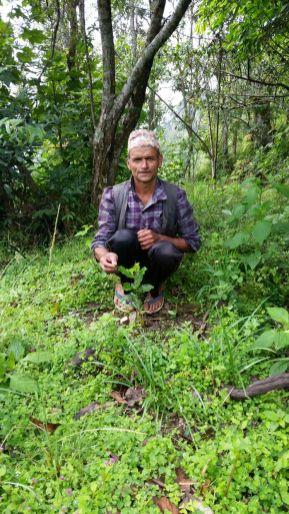 Stolzer Farmer
