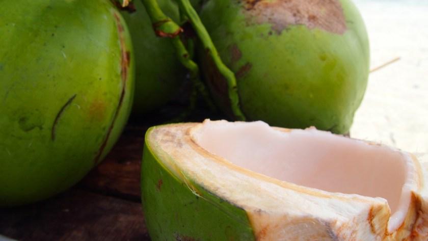 Bohol Coconut