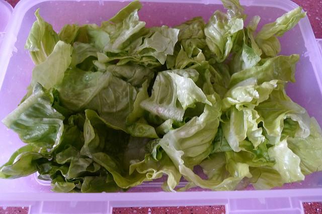 Waldorf Salad Lettuce