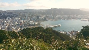 Around Town in Welly: Zealandia and Mt. Victoria Lookout