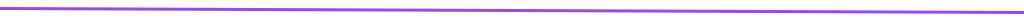 purple horizontal rule
