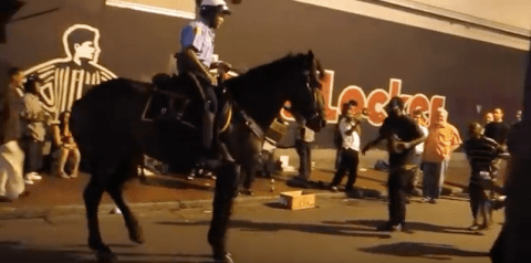 Horse dancing to New Orleans brass band
