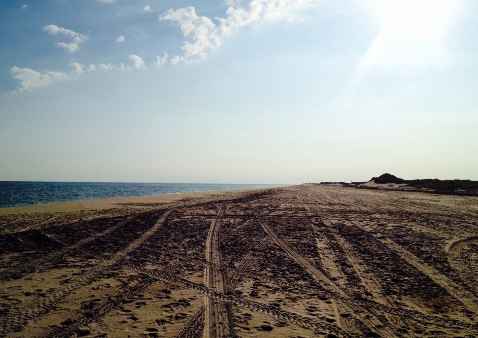 The beach on Cherry Grove, Fire Island. Photo by Rick Stachura. August 20, 2014.