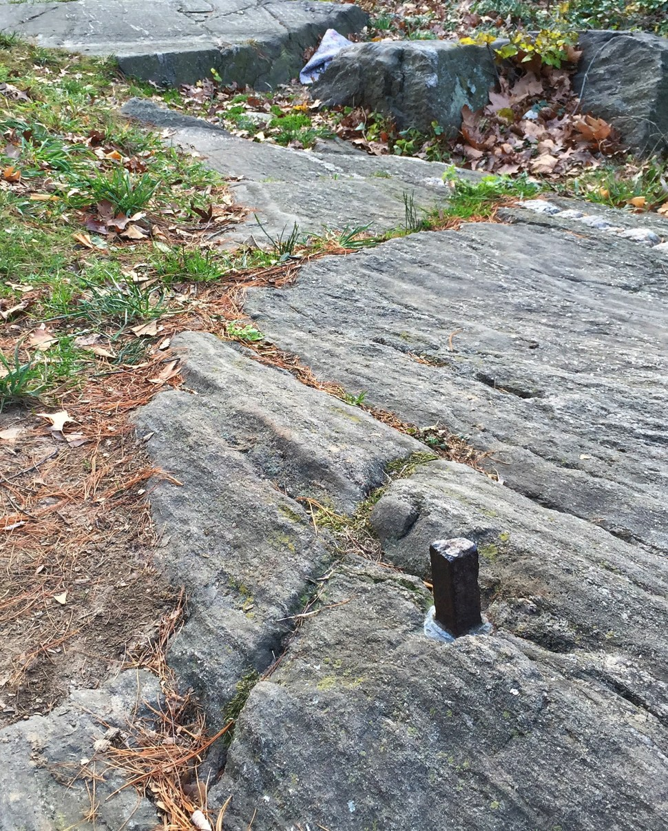 One of John Randel, Jr.'s extant survey bolts. Somewhere in Central Park. Photo by Rick Stachura. December 20, 2015.