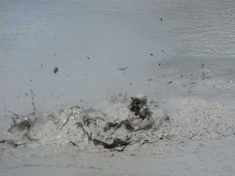 Boiling mud pool