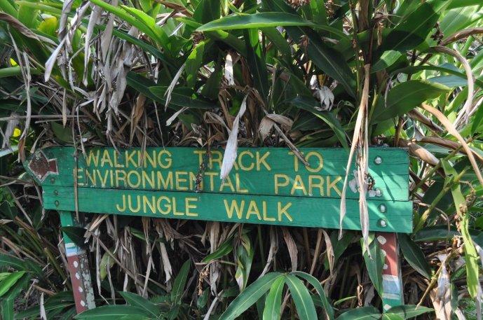 Start of the Jungle Walk in Kuranda