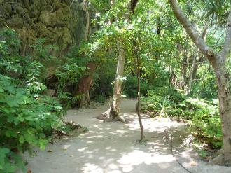 Exploring Phi Phi Ley
