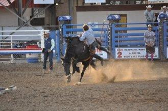 Cody_Rodeo_7