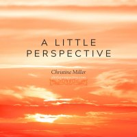 A Little Perspective | Christine Miller