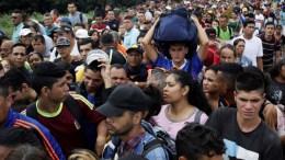venezolanos en el puente simpo