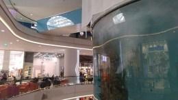 acuario-grande