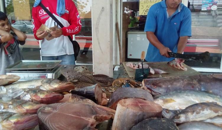 Plan Pescado 200 atenderá a comunidades en Semana Santa