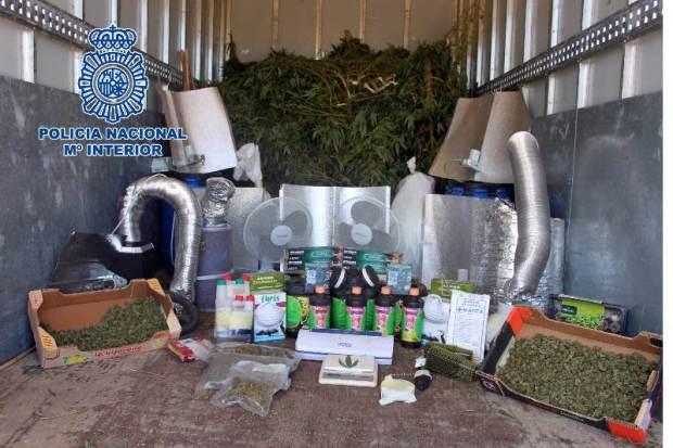 marihuana comunidad madrid