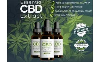 Essential CBD Extract – Una Guía Completa