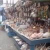 Iniciará en breve retiro de artesanos de caracol