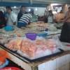 Aumentan ventas y también los precios en La Puntilla