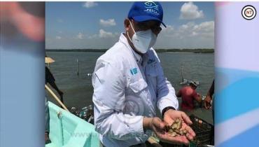 Exhorta Secretaría de Pesca al consumo de productos del mar tamaulipecos.