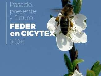 La Biblioteca del Estado de Mérida acoge una exposición de proyectos de I+D+i aplicados al campo y a la agroindustria realizados en CICYTEX