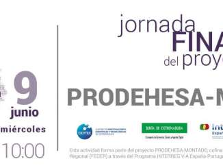 PRODEHESA_MONTADO