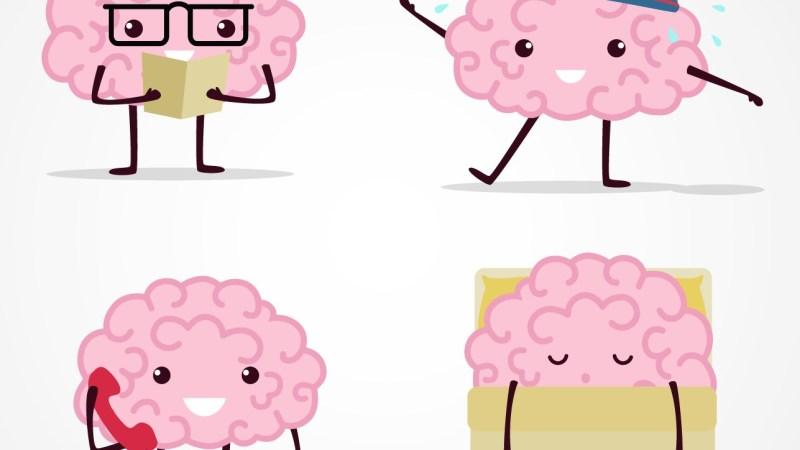El cerebro feliz