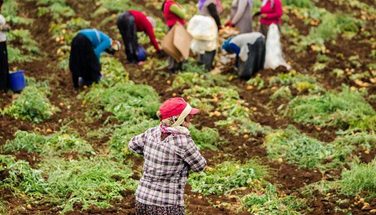 Una renovada lectura de la Pastoral Obrera desde los empobrecidos
