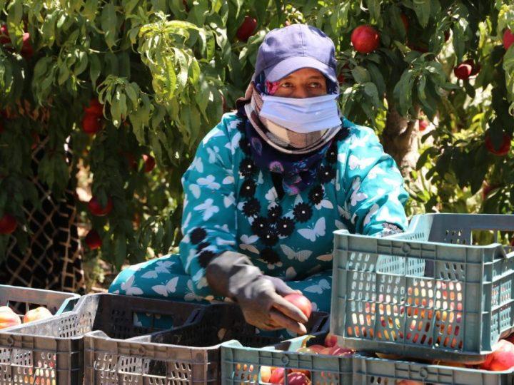 Salario, estabilidad e inserción son imprescindibles para combatir el empeoramiento de la salud de los trabajadores