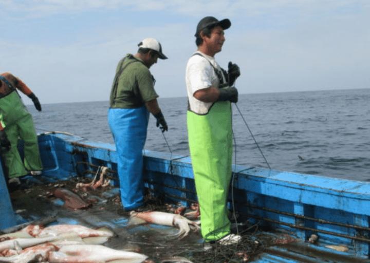 El Apostolado del Mar reitera, en el día de la Virgen del Carmen, la necesidad de cuidar a los trabajadores