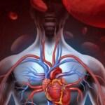 Hipertensão? 6 Alimentos poderosos que te protegerão deste assassino silencioso