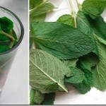 Tome um copo de chá e seu fígado será completamente regenerado!