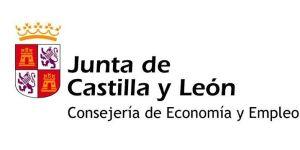 ayudas en Castilla y León